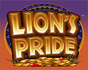 Lion`s Pride